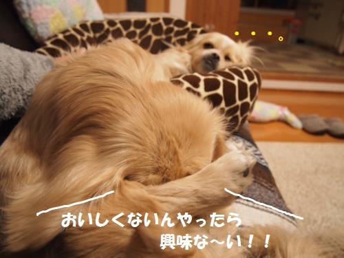 004_convert_20130213225017.jpg