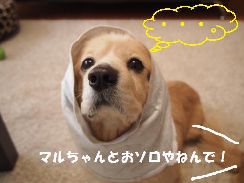 004_convert_20130214230211.jpg