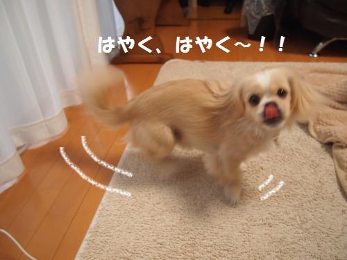 005_convert_20121226010331.jpg
