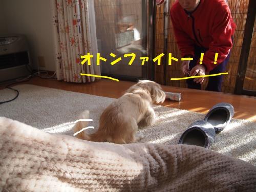 009_convert_20121229204920.jpg
