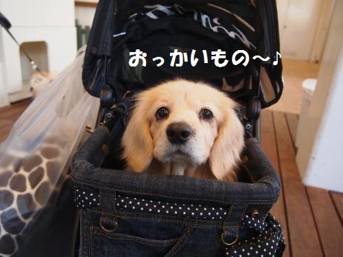 011_convert_20121231203427.jpg