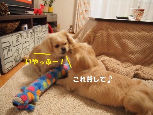 014_convert_20130122213532.jpg