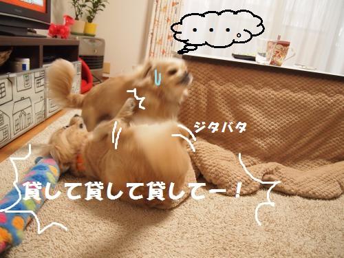 016_convert_20130122213622.jpg