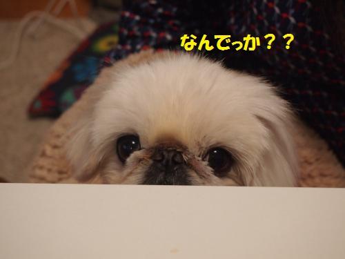 020_convert_20130324214955.jpg