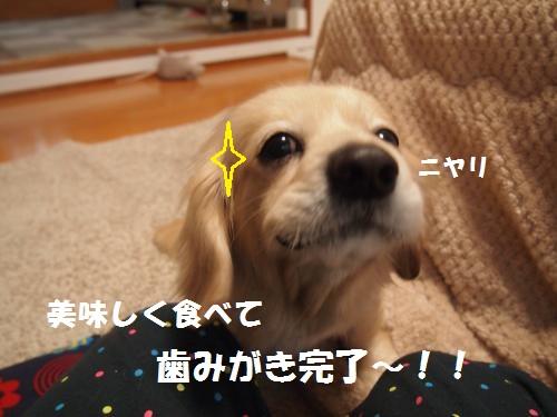 024_convert_20130122212914.jpg