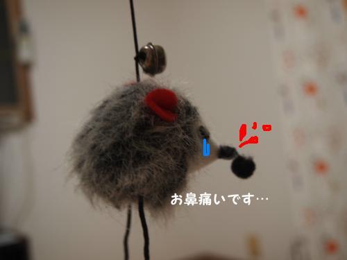 P7023373_convert_20120702225956.jpg
