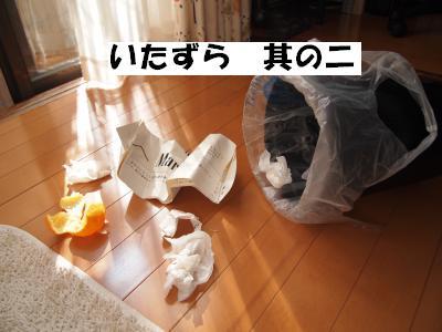 PA306110_convert_20121030135842.jpg