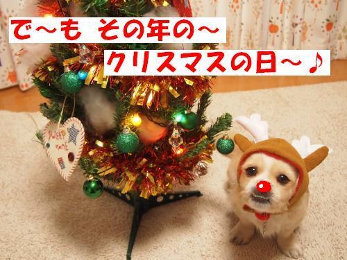 PC177995_convert_20121218153733.jpg