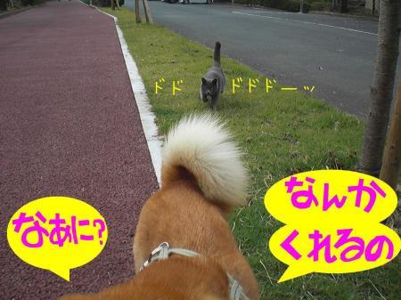 ne2_20121026010544.jpg