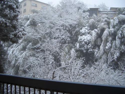 500雪景色