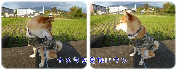 24-10-23-3.jpg