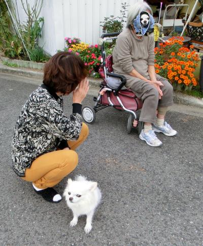141126-銀ちゃんまーみ姉ちゃんと-1