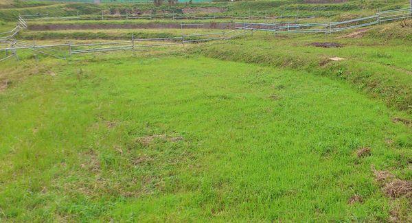 耕作放棄地から放牧地