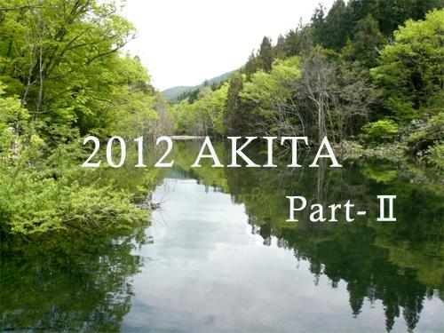 2012akita-2.jpg