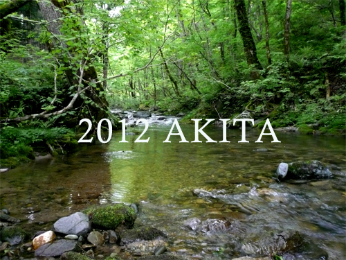 2012akita1.jpg