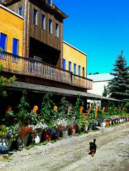 saskatoon farm june 2012_3