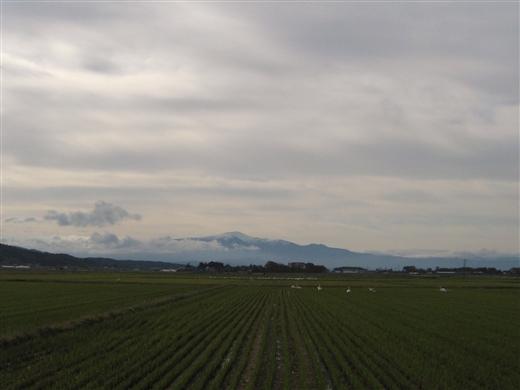 20121111002.jpg