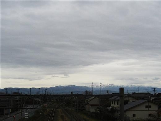 201217005.jpg