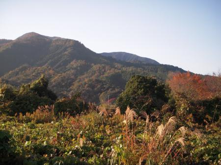 晩秋の鷲峯山 2012