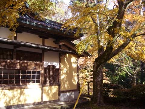 20121129  わくわく撮影会大雄山最乗寺 002+1