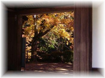 20121129  わくわく撮影会大雄山最乗寺 080+3