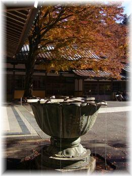 20121129  わくわく撮影会大雄山最乗寺 016+4