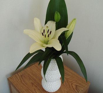 ゴルフボールの花瓶でございます!