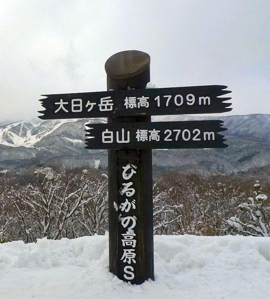 219-hirugano00.jpg