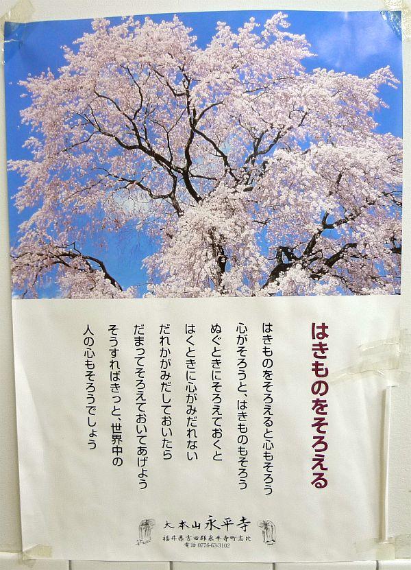 222-eihei_toilet01.jpg