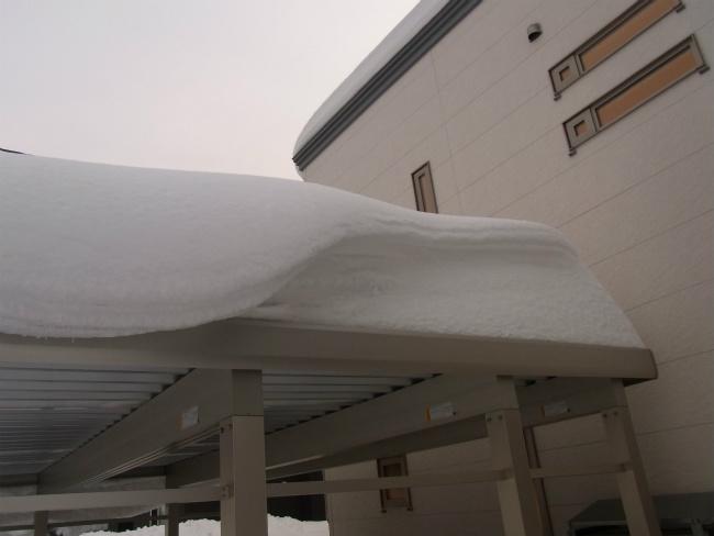 超雪 カーポート上