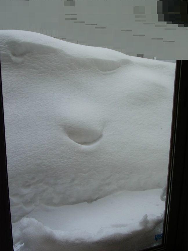 超雪 掃き出し前2