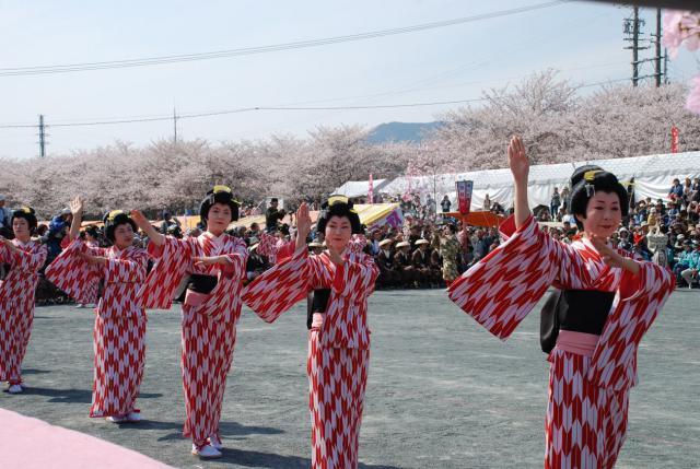 DSC_0120 桜