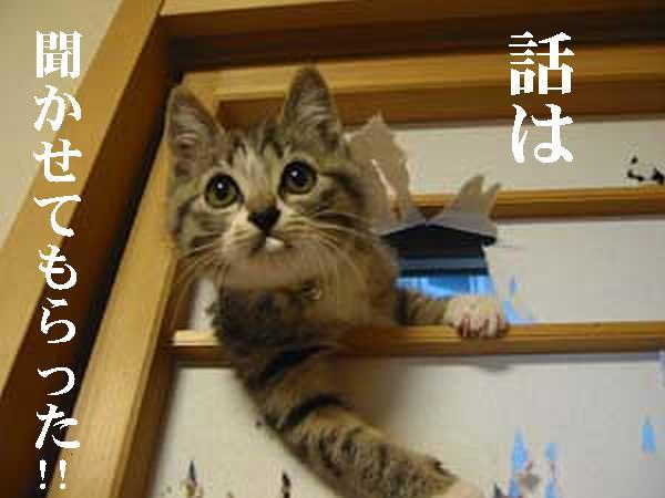 hanashiha.jpg