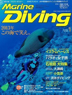 Marine Diving 1