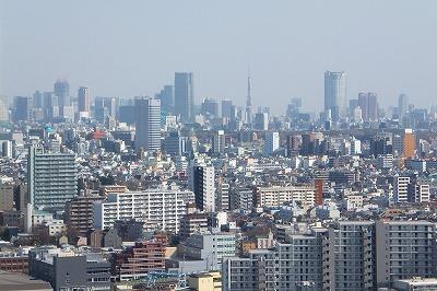 屋上から東京タワー