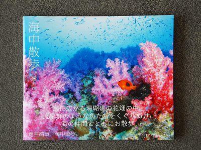 鍵井靖章写真集『海中散歩』パイインターナショナル刊