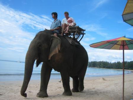 象がいたナイヤンビーチ