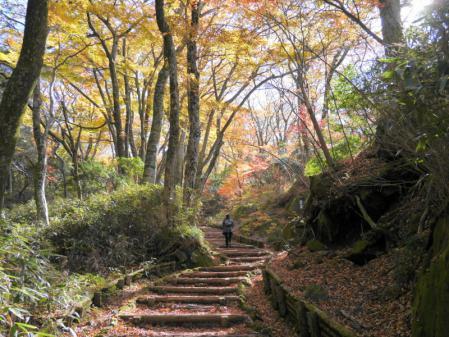箱根散策道 1