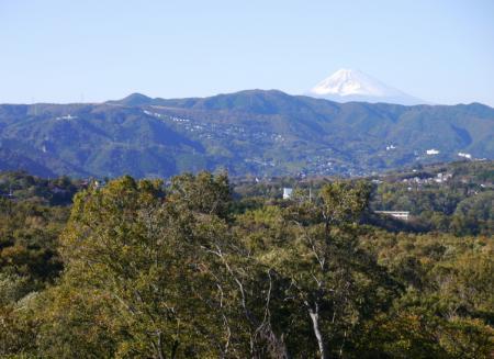 与那国馬牧場から見た富士山