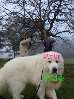 2014_10_20_02.jpg