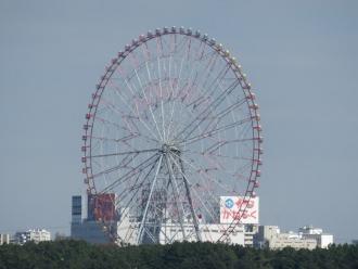 2014_11_16_06.jpg