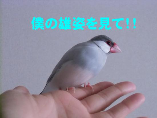 すごいじゃん!!