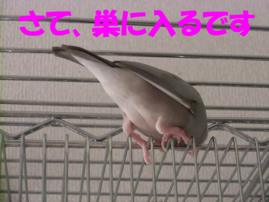 おちり~!!