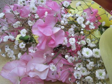 20130216flowers.jpg
