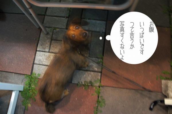 c25_convert_20121014091553