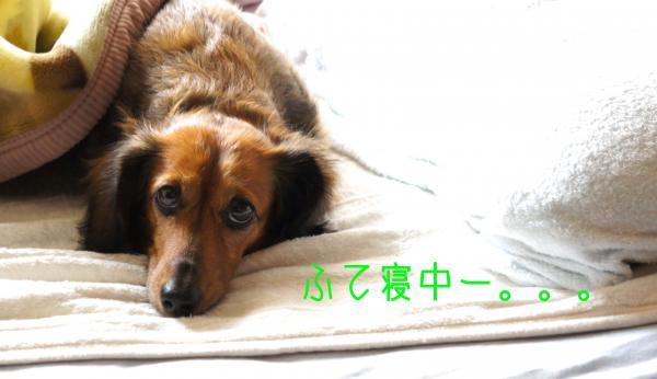 A7_convert_20121007181427.jpg