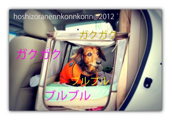ba38_convert_20121209184549.jpg