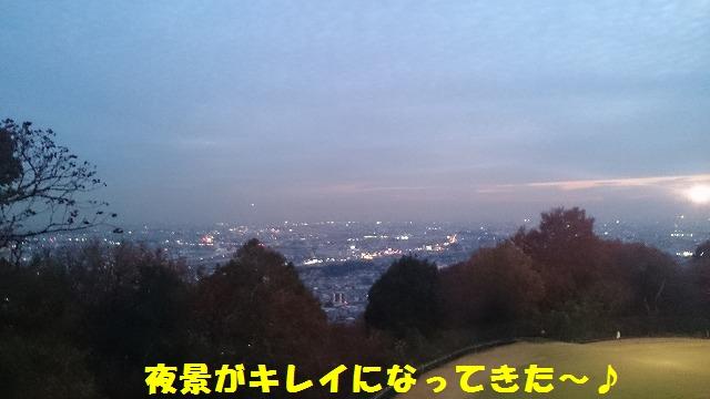 DSC_0067 - コピー