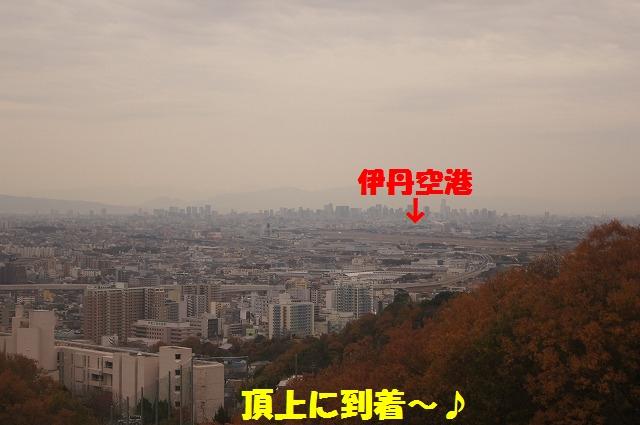 DSC02233.jpg