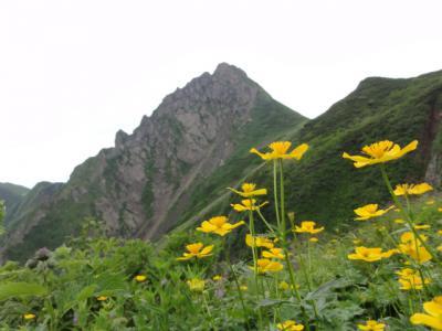 芦別岳 175